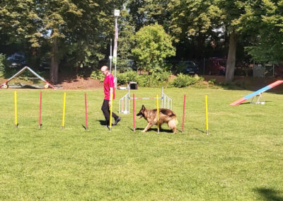 Agility Training 01