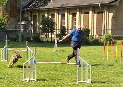 Agility Training 03