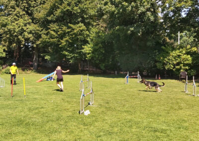 Agility Training 11