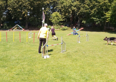 Agility Training 12