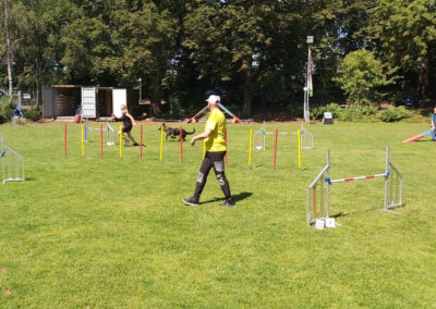 Agility Training 13