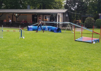 Agility Training 16