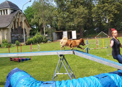 Agility Training 18