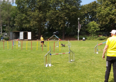 Agility Training 19