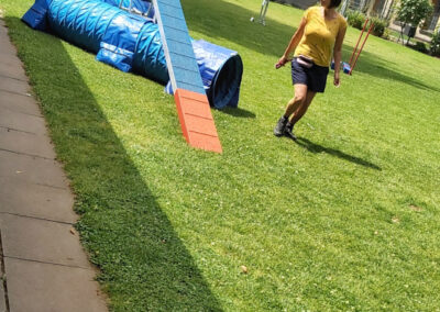 Agility Training 20
