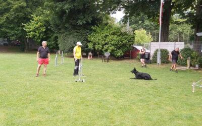 Agility Training mit Martin Schoffelmeer 13./14.06.2020