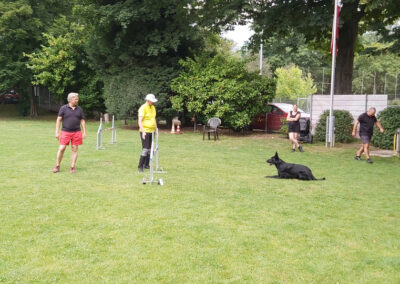 Agility Training 22