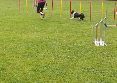 Agility Training 26