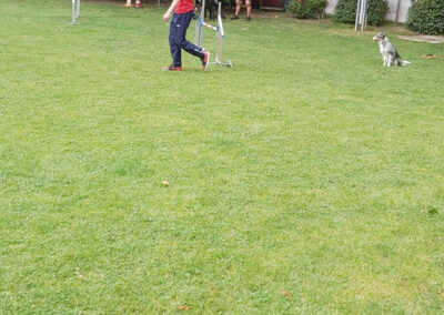 Agility Training 27
