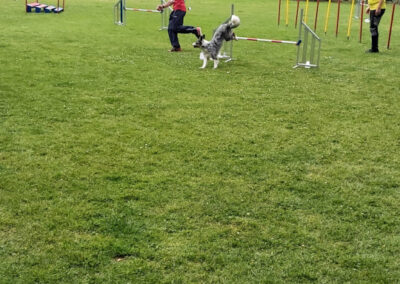Agility Training 32