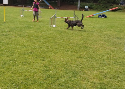 Agility Training 33