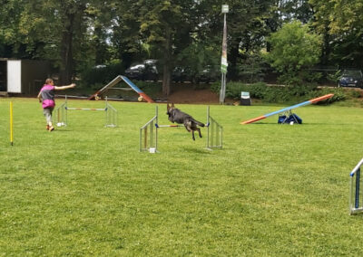 Agility Training 34
