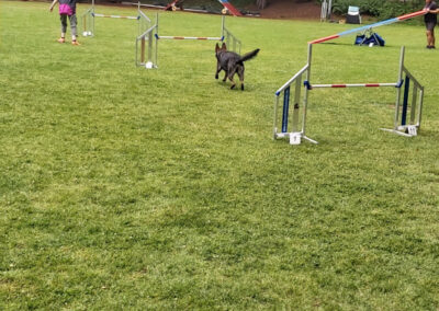 Agility Training 35