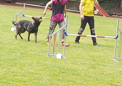 Agility Training 36
