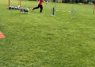 Agility Training 38